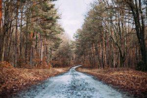 Nerazvrstane ceste