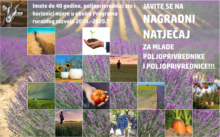 Raspisan nagradni natječaj za najboljeg mladog poljoprivrednika/poljoprivrednicu