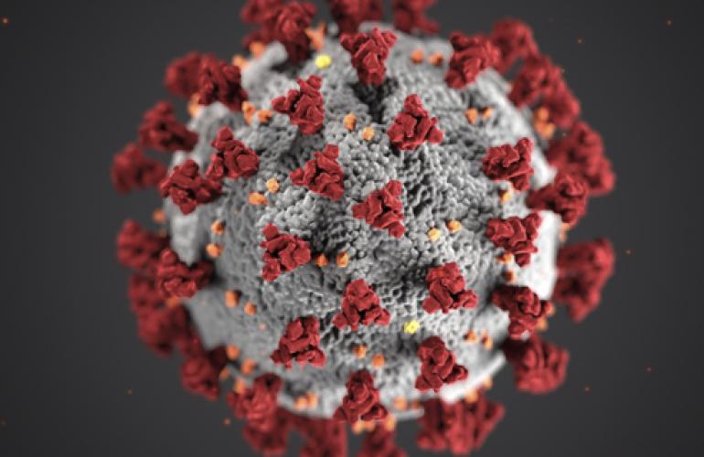 Objavljeni su novi pozivi za žurna istraživanja varijanti koronavirusa